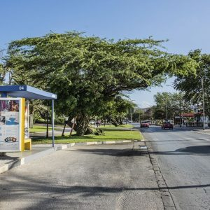 Left view of Barcelo Bus Shelter